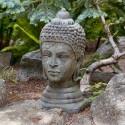 Buddhism & Eastern